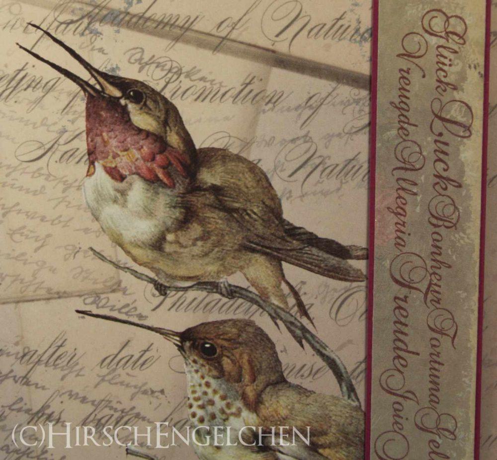 Vogelmotiv Vintage
