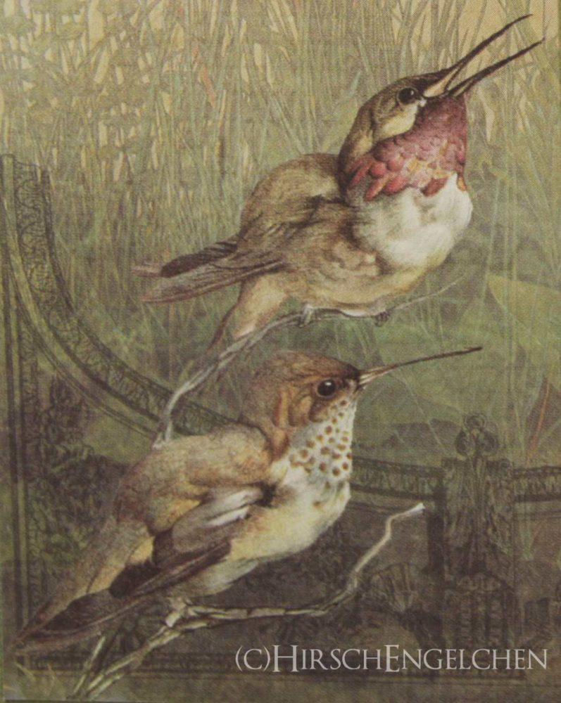 Vintage Vogelmotiv 2